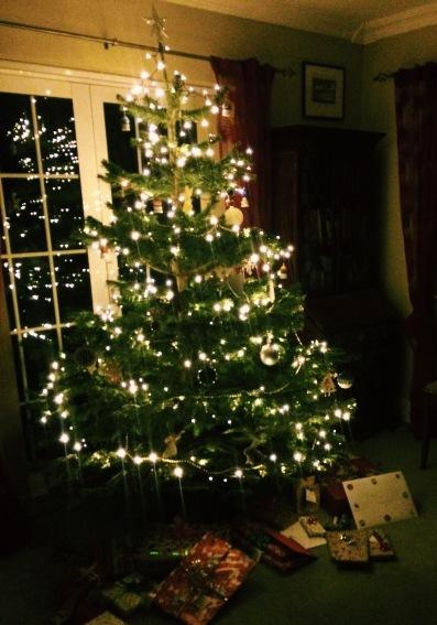 countdown to christmas nigellaeatseverything.com